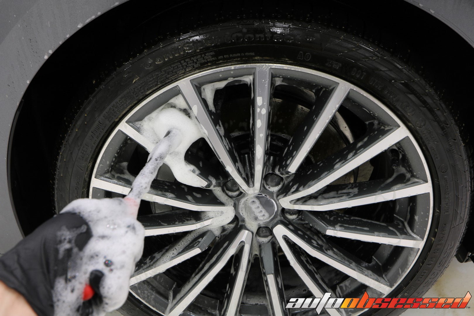2020 Audi S5 Wheel Brushes Wheel Cleaner - Auto Obsessed