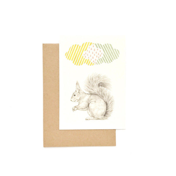 card squirrel