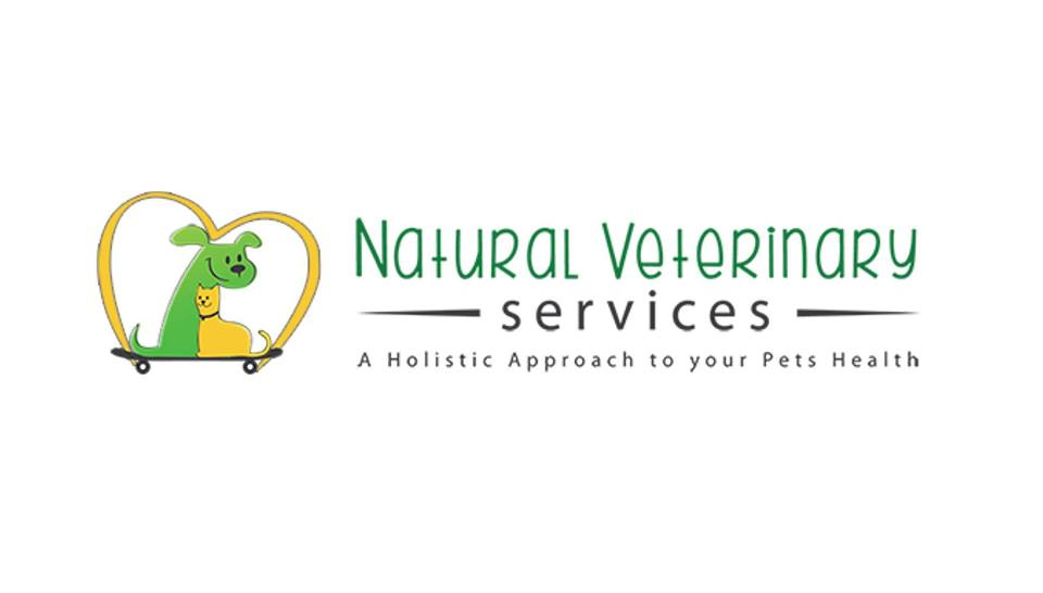 No Sedation Dental Cleaning For Pets