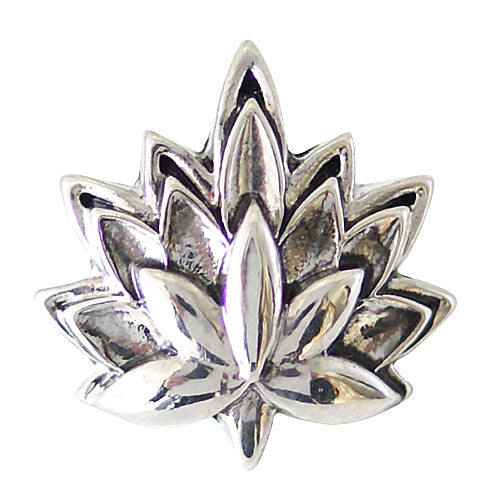 Leaf shaped silver plated snap