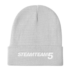 STEAMTEAM 5 Knit Beanie (6 colors)