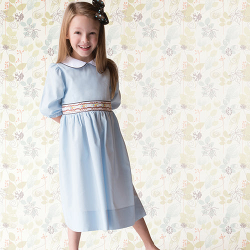 Medium Blue 3/4 Sleeve Brown Trim Smocked Baby Dress w/Peter Pan Collar 17F 6065 D