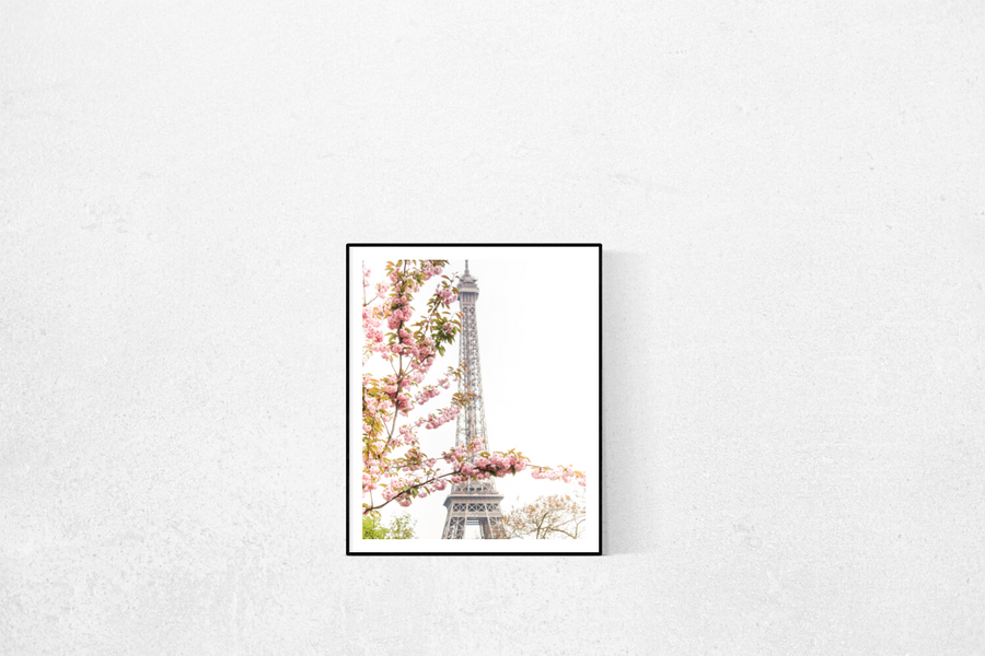 Pink Cherry Blossoms at The Eiffel Tower - Every Day Paris