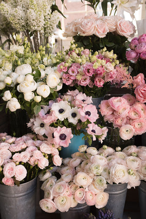 London Flower Shop - Every Day Paris