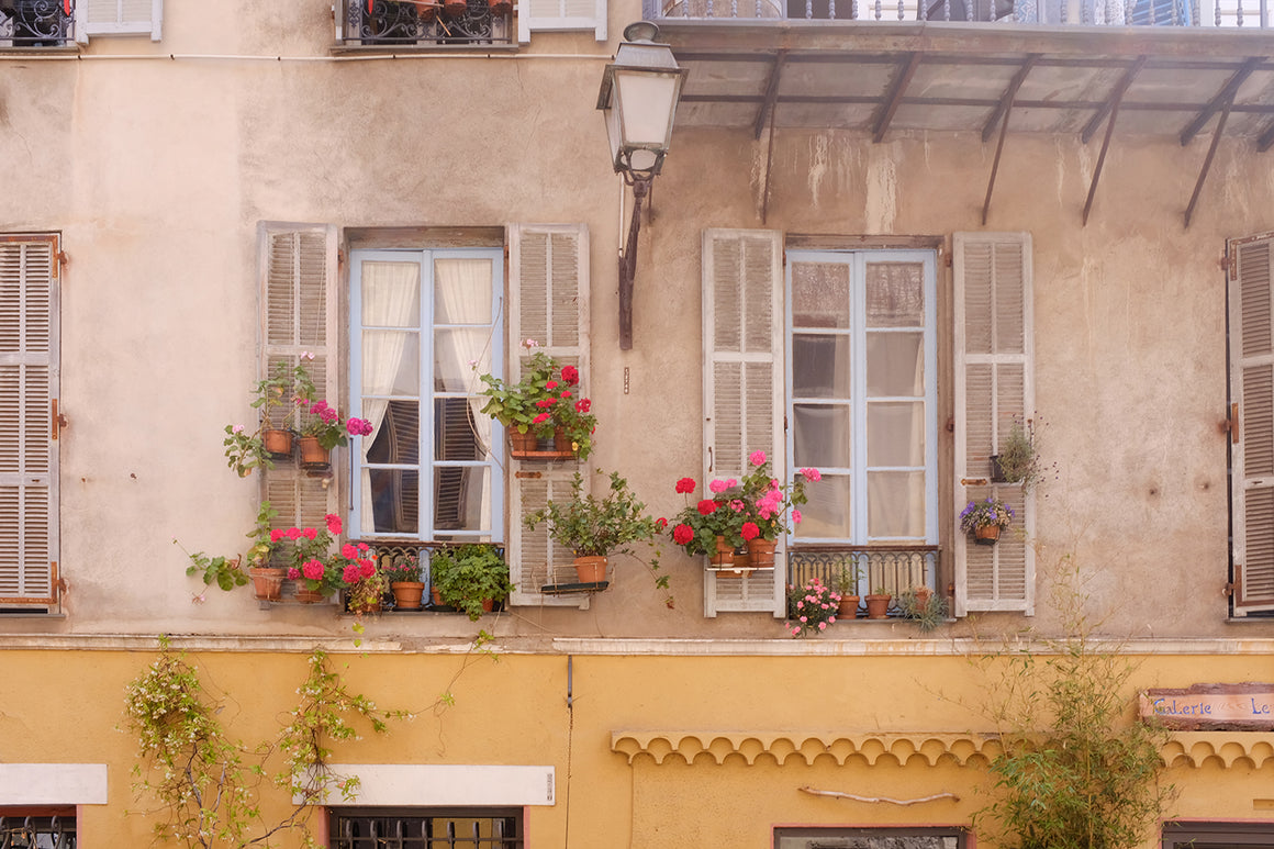 Window Boxes in Old Nice France - Every Day Paris