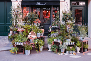 Summer Left Bank Flower Shop in Paris