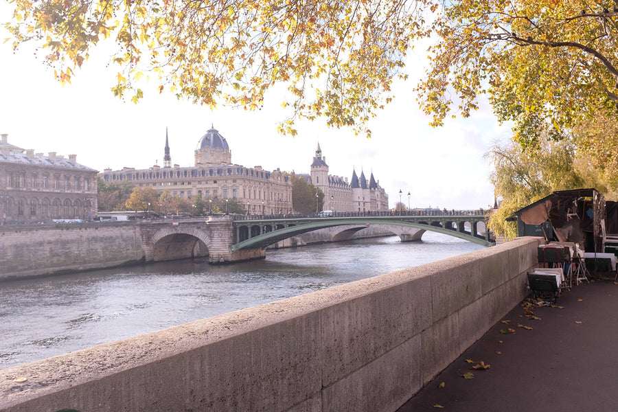 Fall Light on The Seine - Every Day Paris