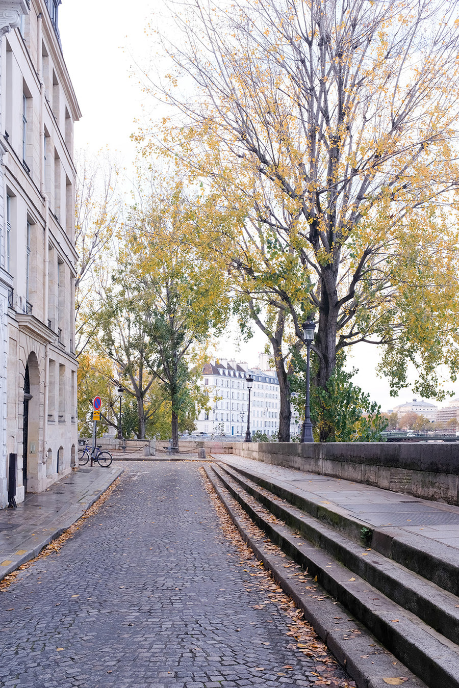Fall on Ile St Louis - Every Day Paris