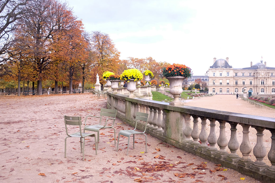 Fall Morning Walk in Luxembourg Gardens
