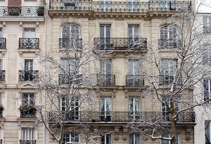 Paris in the Snow Series Four - Every Day Paris