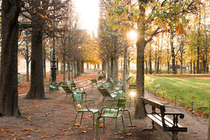 Autumn Evening Light in The Tuileries - Every Day Paris