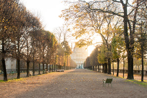 Fall Light in the Tuileries - Every Day Paris
