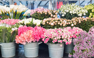 Bastille Flower Stand - Every Day Paris