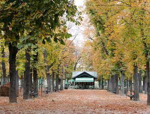 Fall in Luxembourg Gardens - Every Day Paris