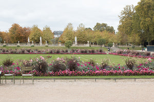 Fall Luxembourg Gardens - Every Day Paris