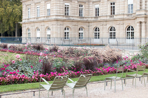 Luxembourg Gardens in the Fall - Every Day Paris