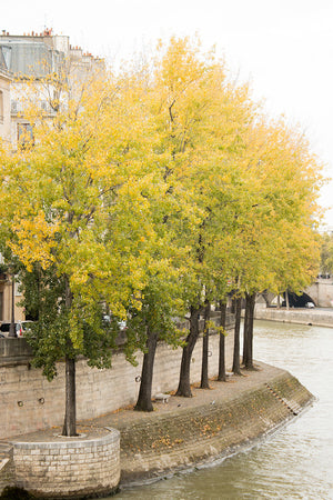 Fall Stroll on The Seine - Every Day Paris