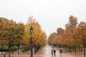 Rainy Afternoon in The Tuileries - Every Day Paris