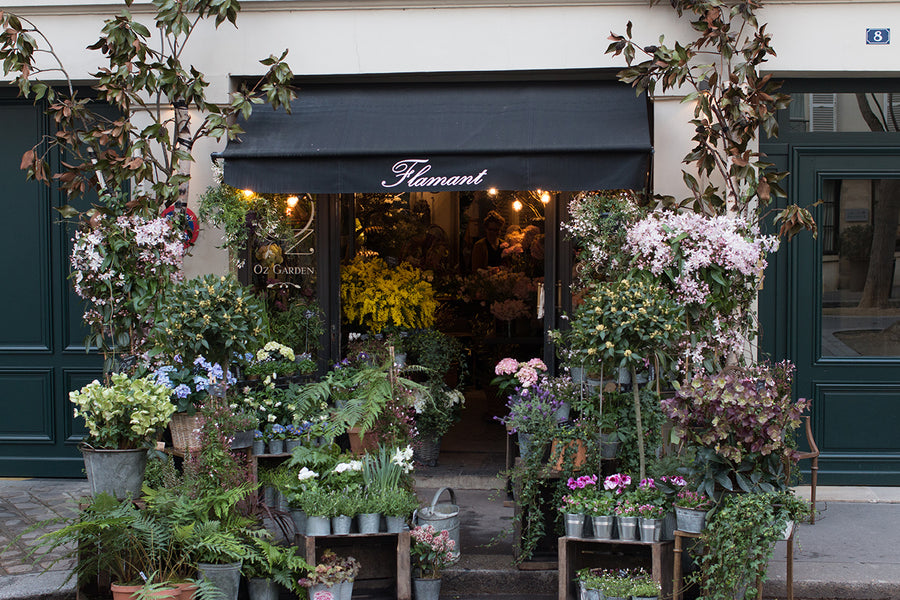 Left Bank Flower Shop in Paris in the Spring - Every Day Paris