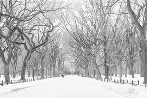 Snow in Central Park NYC - Every Day Paris