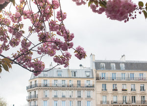 Paris in Bloom Along the Seine - Every Day Paris