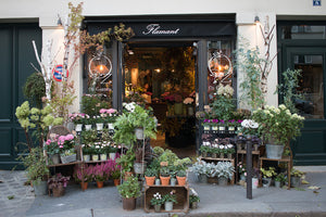 Left Bank Flower Shop in Paris in the Fall - Every Day Paris
