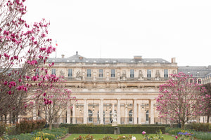 Spring in Palais Royal - Every Day Paris
