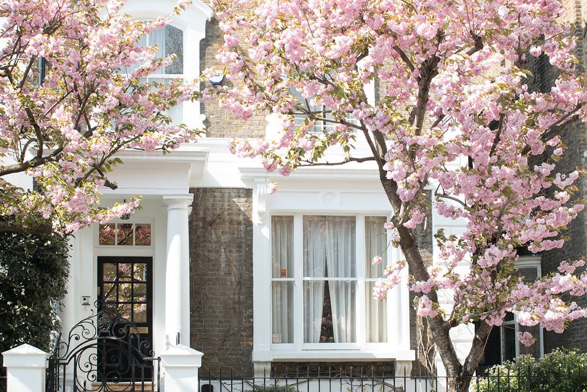 Spring Blossom Season in London - Every Day Paris