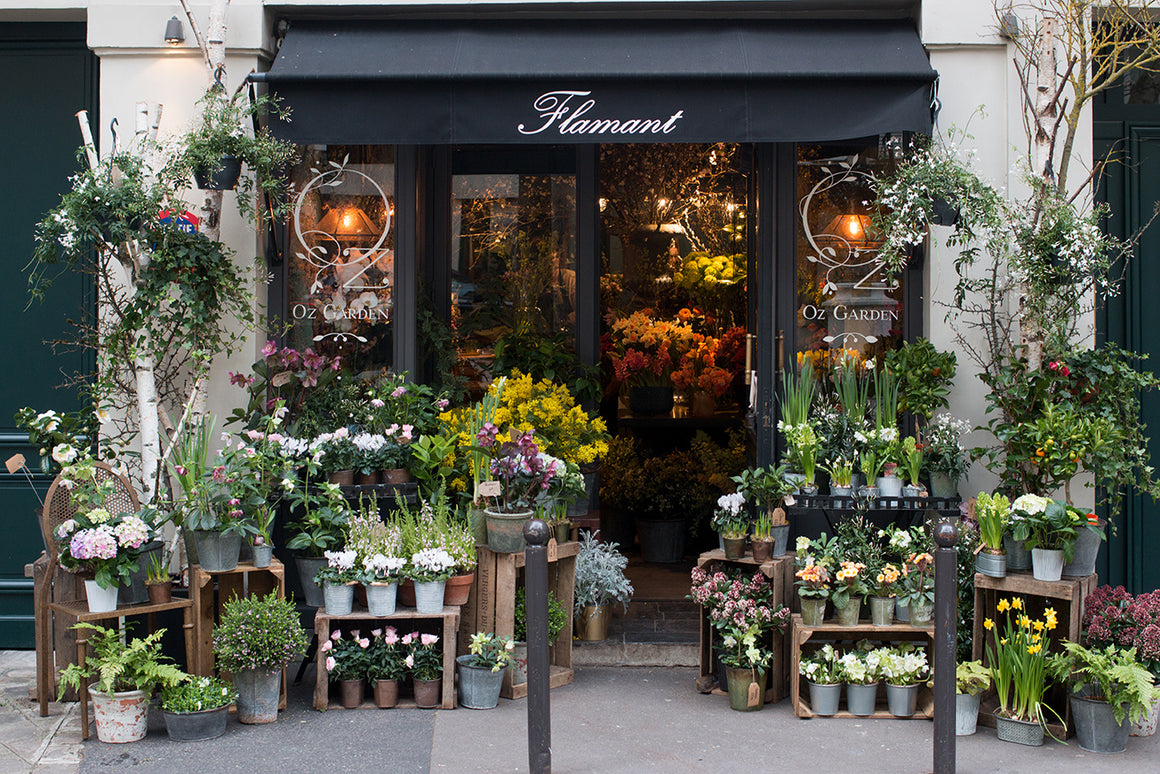 Left Bank Flower Shop in Paris - Every Day Paris