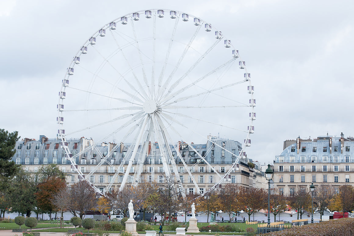 Winter Morning in The Tuileries - Every Day Paris