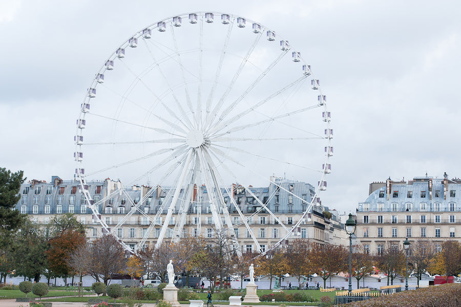 Winter Morning in The Tuileries