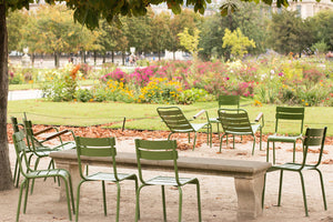 Tuileries Gardens in the Spring - Every Day Paris