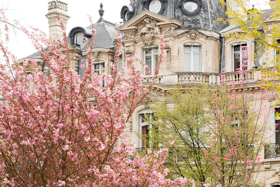 Parc Monceau in the Spring - Every Day Paris