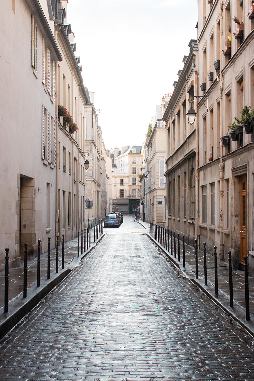 rain soaked cobblestone streets in paris rebecca plotnick photography