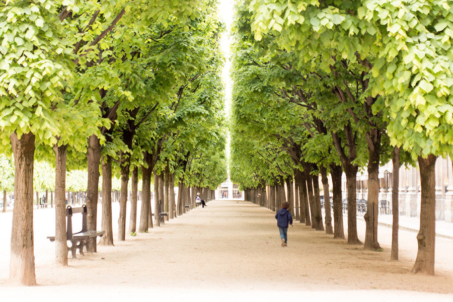 Morning walk through Palais Royal - Every Day Paris