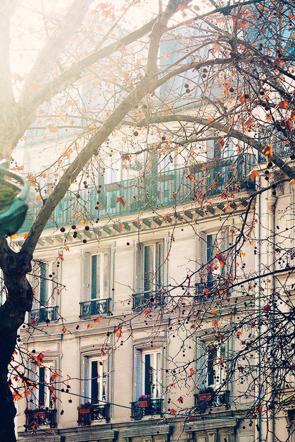 Winter Rooftop Views of Montmartre - Every Day Paris