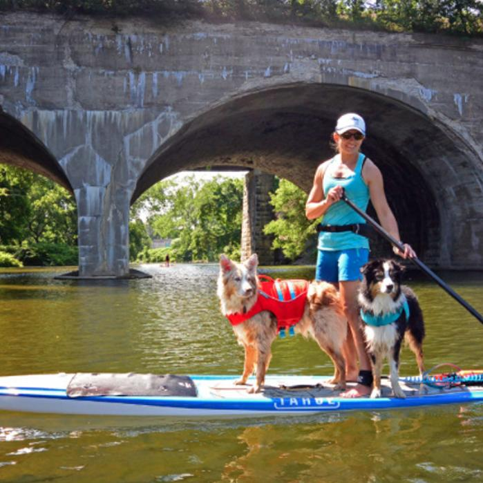 BOARD REVIEW: ZEPHYR | On Tour With How to SUP With Your Pup!