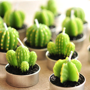 6-piece Cactus Tea Light Set