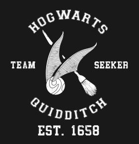 Harry Potter Quidditch Color Vinyl Decal