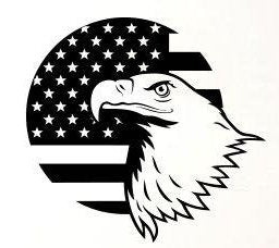 Eagle and Flag Vinyl Decal/Sticker