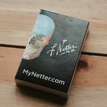 Netter Anatomy Playing Cards