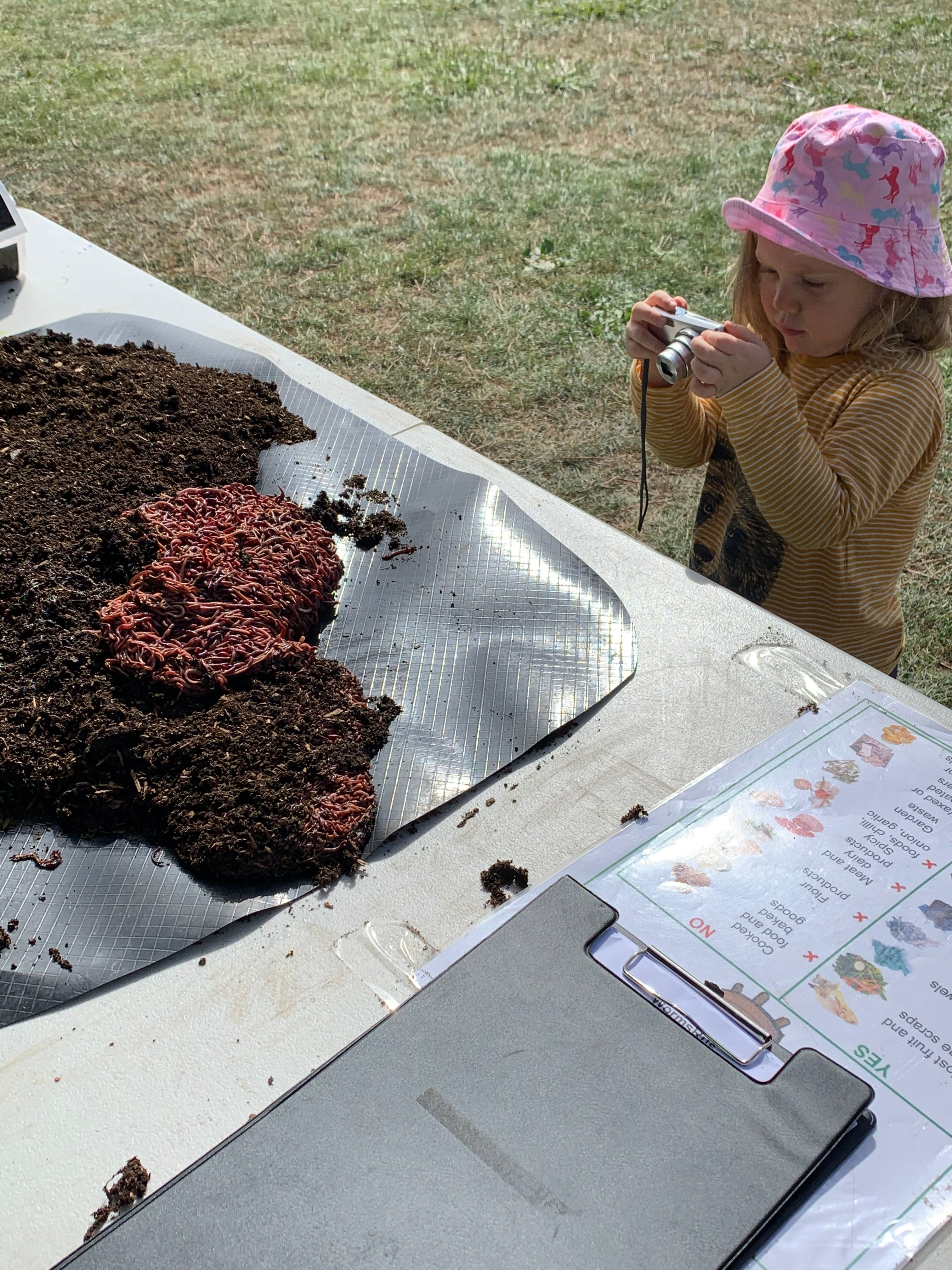 Cute little girl clicking worms photo