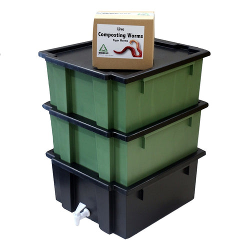 COMBO SPECIAL: WormsRus Worm Farm - Base and 2 Feeding trays with 250g Worms