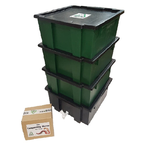 COMBO: WormsRus Worm Farm - Base and 3 Feeding trays with 250g Worms