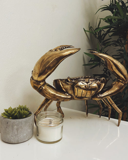 Brass Crab- Medium