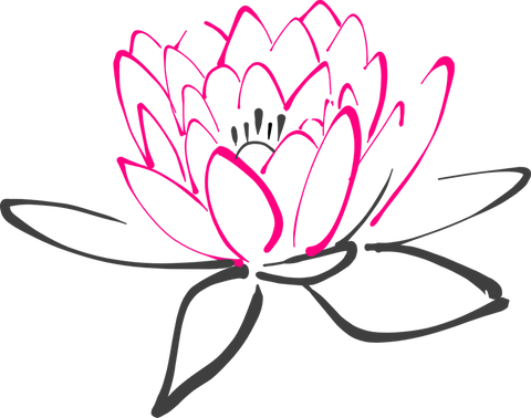 Spiritual Meaning Of The Lotus Flower My Zen Temple