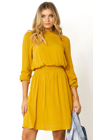 Sadie Shirred High Neck Dress