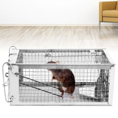 "Single Door Cage Trap 24""X7""X7"""