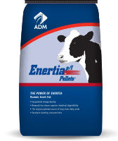 By Pass Fat Pellets ADM Brand Enertia 50 Lb Bags (Calcium salts)