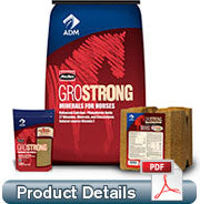 GROWSTRONG POWERGLOW HORSE FEED